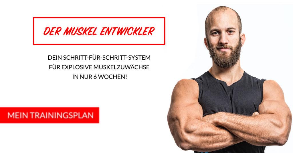 muskelauifbauen-trainingsplan-003